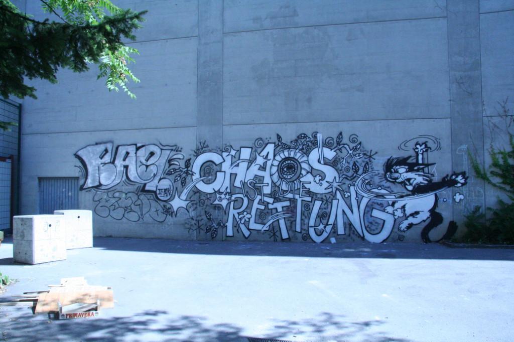 chaosistdierettung